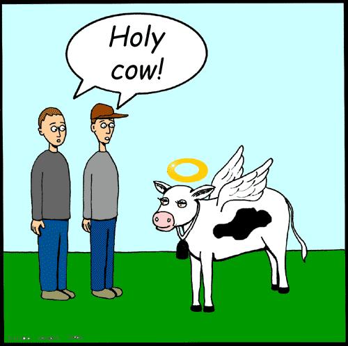 clip art holy cow - photo #12