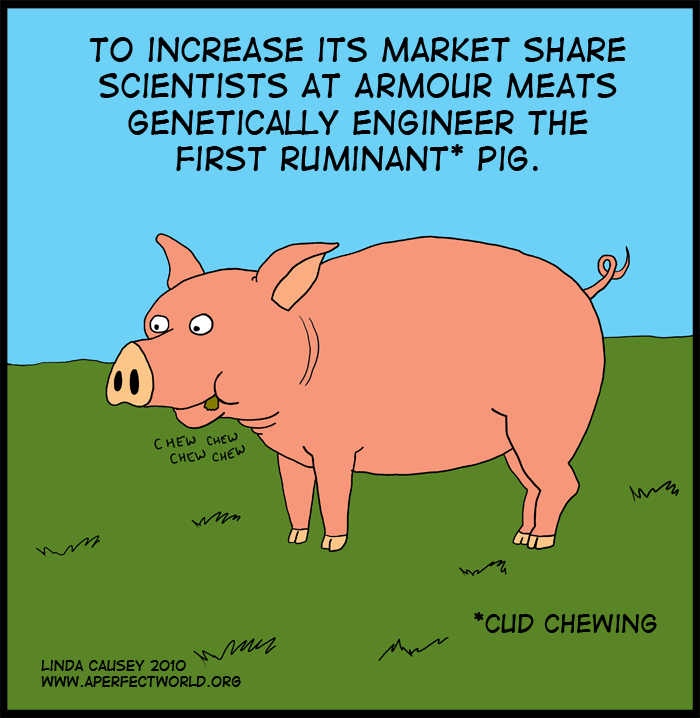 Armour Meats increases market share via genetic engineering