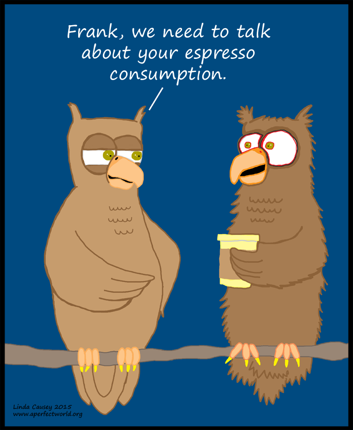 Frank the Owl's coffee addiction