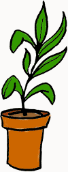 potted_plant.png (13618 bytes)